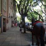 Casarios da Felix da Cunha no blog detalhes magicos