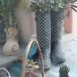 Sapato florido CCMA