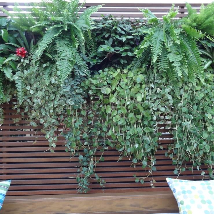 Deck Casa Cor no blog Detalhes Magicos