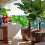 grandes-plantas-dentro-de-casa